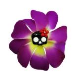 Pince violette tête de mort
